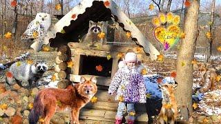 №1 Приморский САФАРИ ПАРК, первая экскурсия- https://youtu.be/V4_uv4B2SDc Primorskiy SAFARI PARK - The second tour: Park of beasts of prey, bird park. Все