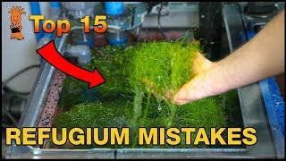 Refugium Mistakes: The WRONG way to set up a refugium.