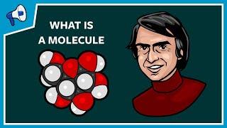 What Is a Molecule?