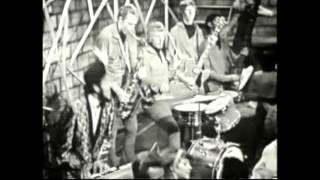 Wooly Bully Sam the Sham HD