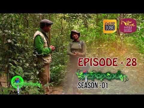 Sobadhara | Season - 01 | Episode 28 | Sobadhara Rupavahini
