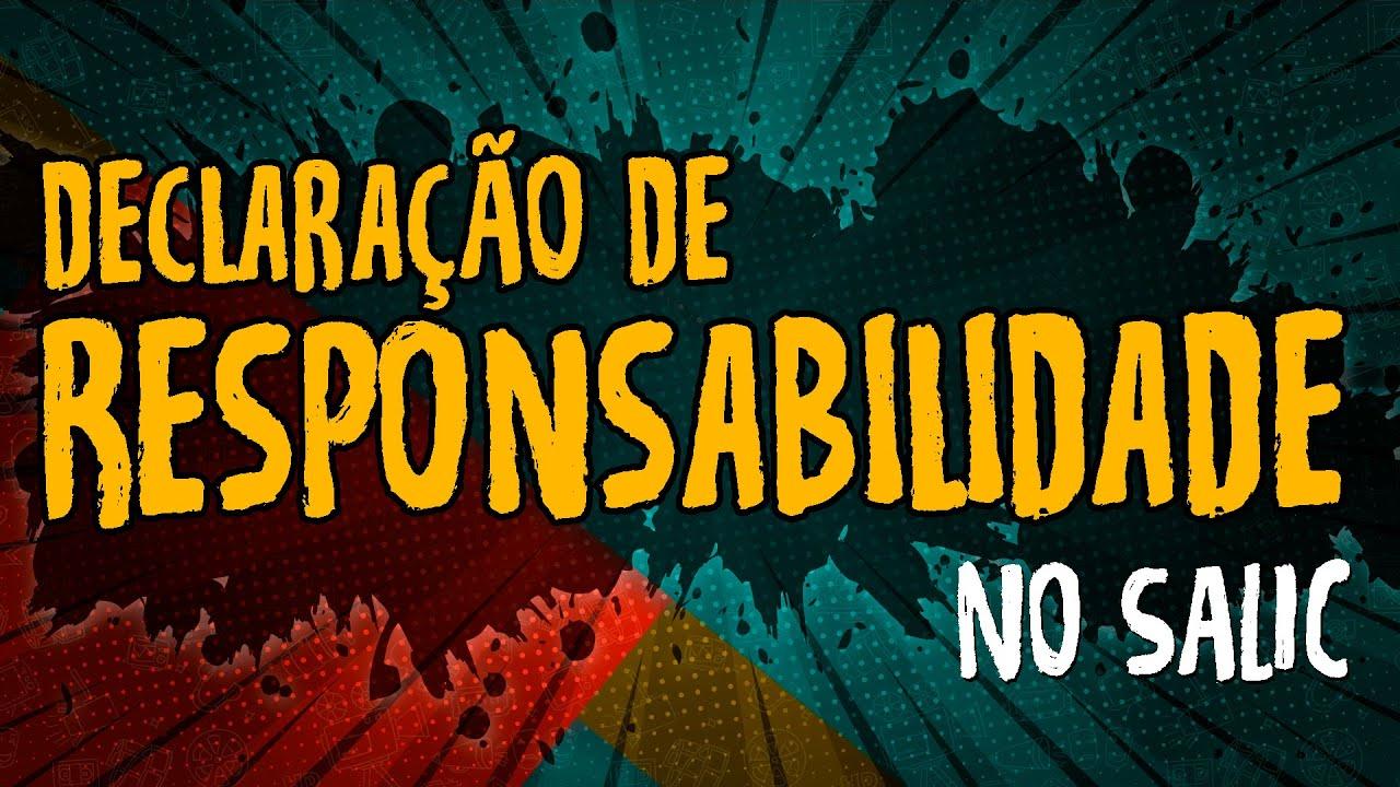 Declaração de Responsabilidade – #SALIC