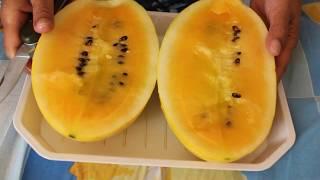 Ананасовый арбуз. Что это и какой же он на вкус?