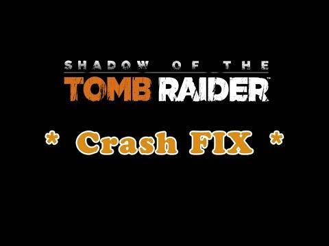 Problem with display driver :: Shadow of the Tomb Raider