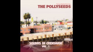 Terrace Martin Presents The Pollyseeds - Funny How Time Flies