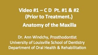 Video #1 - C D Anatomy of the Maxilla