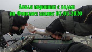 Спб отчет о рыбалке дамба северная сторона