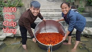 Hưng Vlog - Phóng Sinh 1000 Con Cá Chép Vàng Đưa Ông Táo Về Trời Cùng Mẹ Ăn Tết Ông Công