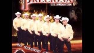 Banda Preciosa / De Sangre Mexicana