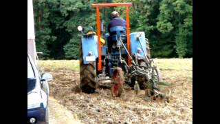 Pferde In Der Landwirtschaft   Arbeiten Wie Anno Dazumal!