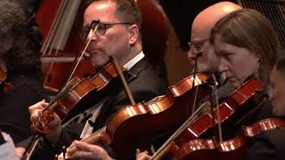 'Positive Spirit' performed by the World Doctors Orchestra at Dubai Opera - 22 March 2018
