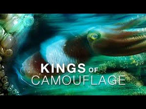 Animal Documentary 2015| Kings of Camouflage| Nature Documentary