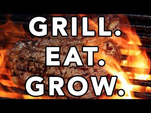 Video Bodybuilding Meals On The Grill: Healthy BBQ