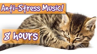 Music for Cats! Soothe Stressed Cats with Calming Music, Relieve Anxiety, Help Cats to Sleep! 🐱 💤