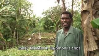 Our Seeds Our One Hour Documentary With English Subtitles