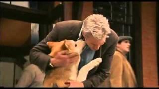 Chú chó Hachiko-clip cảm động