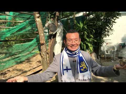Dr. Cantonese: bok1je5 = get laid = have sex
