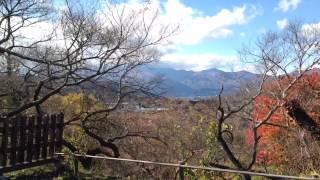 高遠城址公園紅葉20142014.11.3長野県伊那市iPhone5