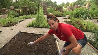 Ohio Victory Gardens: How to Plant Seeds