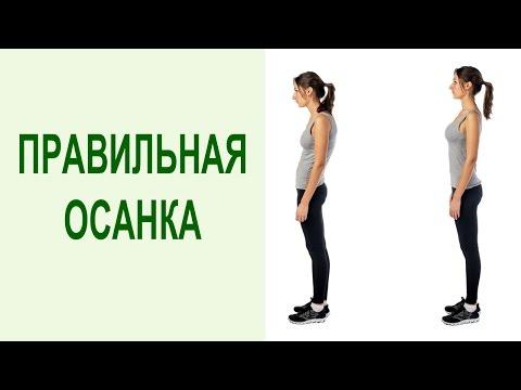 Упражнения при сколиозе позвоночника с рисунком