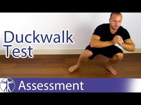 , title : 'Duck Walk / Childress Test | Meniscus Tear