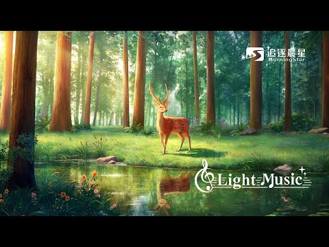 Light Music   3小時靈修音樂 如鹿切慕溪水 安靜神前 【連續播放】
