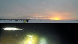 Зимняя рыбалка 2019 на озере / Winter fishing 2019 on the lakeHD 2019