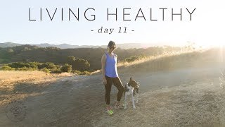 10 Tips for Starting a HEALTHY LIFESTYLE 🐝 DAY 11 | HONEYSUCKLE