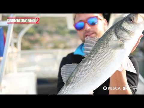 La pesca in Andrey di Petersburgers di video