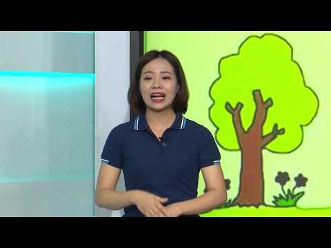 Ở nhà thời Covid - Chương trình dành cho học sinh trường Giáo dục và hỗ trợ trẻ em bị thiệt thòi tỉnh Thái Nguyên