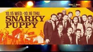 SNARKY PUPPY : BLUE NOTE TOKYO 2014 trailer