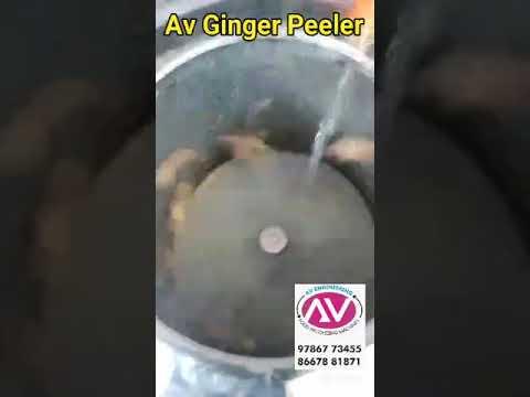 Ginger Peeling Machine