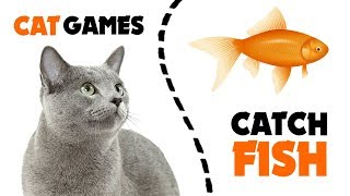 GAMES FOR CATS ★ FISH CATCHING games on screen