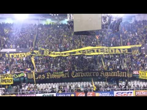 """""""Barra amsterdam- hace años que yo vengo"""" Barra: Barra Amsterdam • Club: Peñarol"""