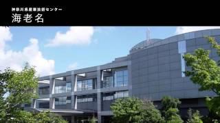 遠隔操作による超音波診断ロボット【さがみロボット産業特区】神奈川県制作ムービー