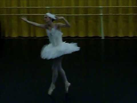 Fokine's Swan