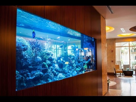 30 Unbelievable Fish Tanks That Makes You Wish You Were a Fish