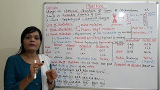 Mutation (Part-01) = Point and Frameshift Mutation (HINDI) By Solution Pharmacy