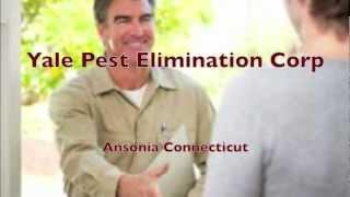 Extermination Services Ansonia, CT - 203-735-3371