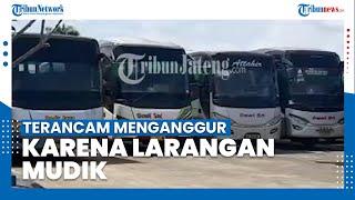 Sopir Bus Terancam Mengganggur karena Kebijakan Larangan Mudik pada 6-17 Mei 2021