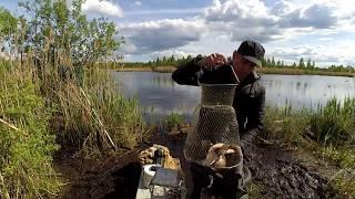 Рыбалка в лыково жуковский район сегодня