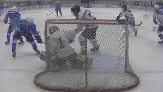Голы матча ЛХК «Bi Hockey Team» - ЛХК «Brigantina 2». АЛХЛ сезон 2019-2020