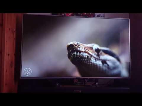 Panasonic tx-50dx700b review