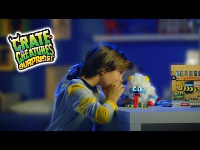 Інтерактивна іграшка CRATE CREATURES SURPRISE! - ДРАКОНЧИК