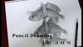 연필드로잉 - 굴비 그리기 (PENCIL DRAWING)