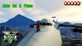 GTA Cargo Plane Funny Moments - GTA 5 Ants On A Plane - Grand Theft Auto 5 Cargo Plane Fun