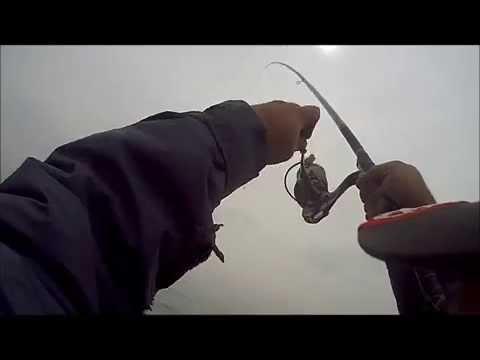 La causa scaldata per pesca