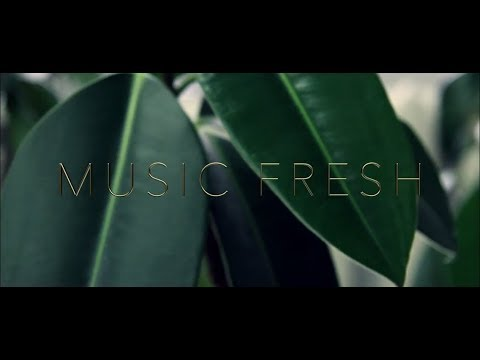 Vanotek feat. Eneli - tell me who (cover by Music Fresh)
