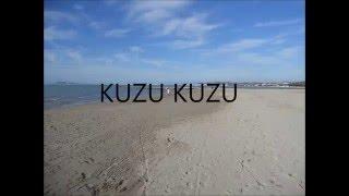 Kuzu Kuzu-Tarkan (Lyrics)