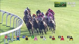 Aethero wins the Jockey Club Sprint